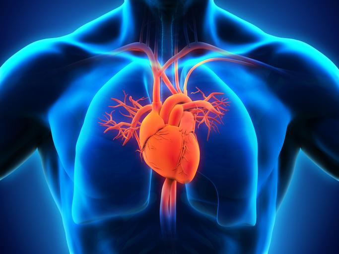 atrial fibrillation, AFib, AFib symptoms