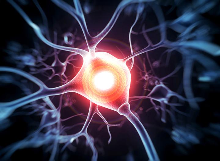 complex partial seizures, epileptic seizure